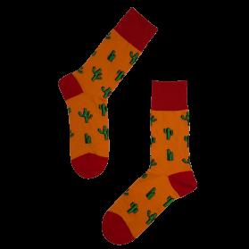 Kaktus »1«